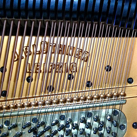 Bluthner grand piano, detail of frame and strings